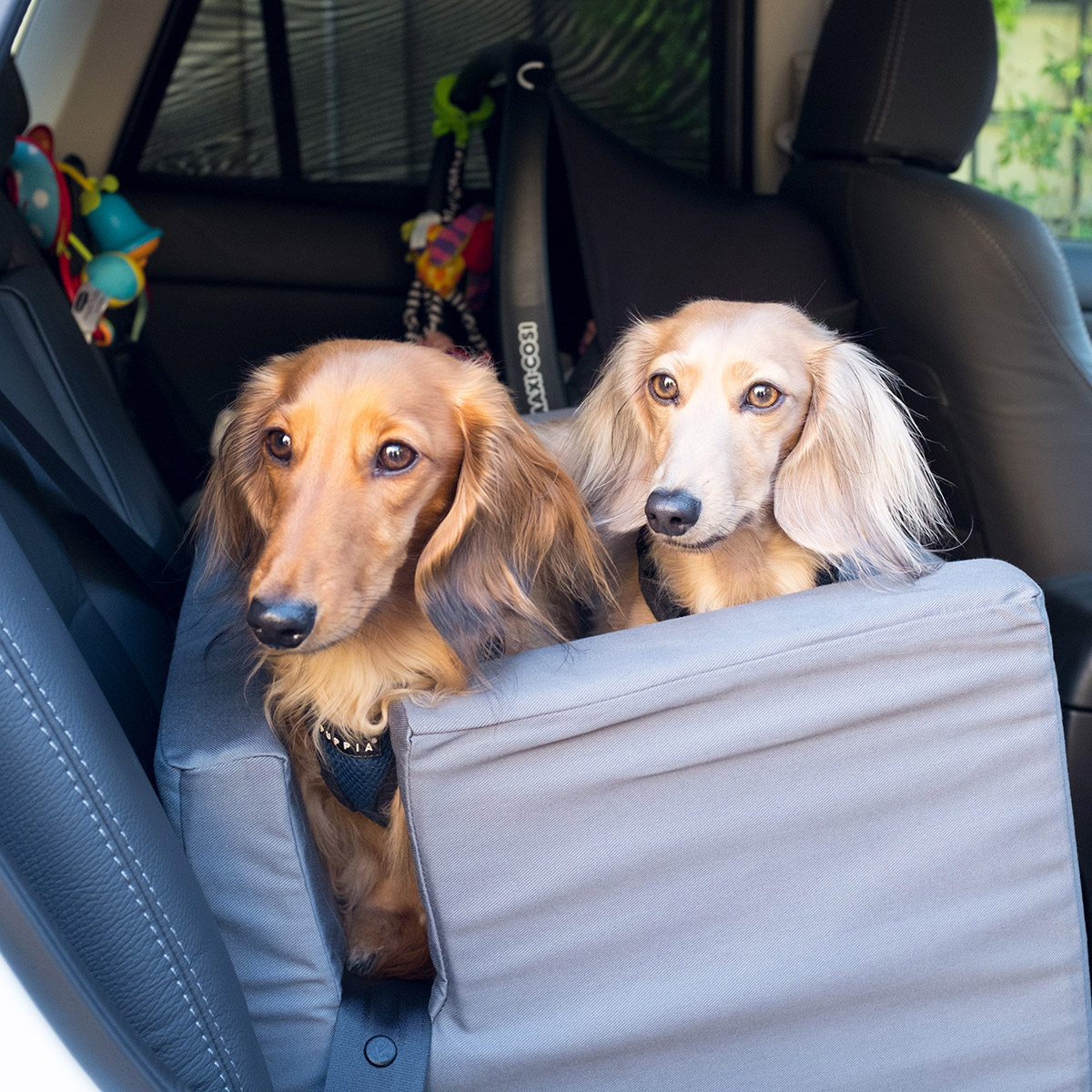 Ora Pets Woof Seat Deluxe Blue