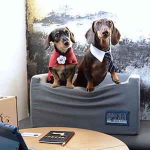 Ora Pets Woof Seat Deluxe Grey